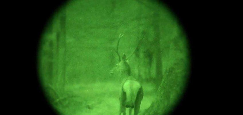 Technika vs. vadászetika